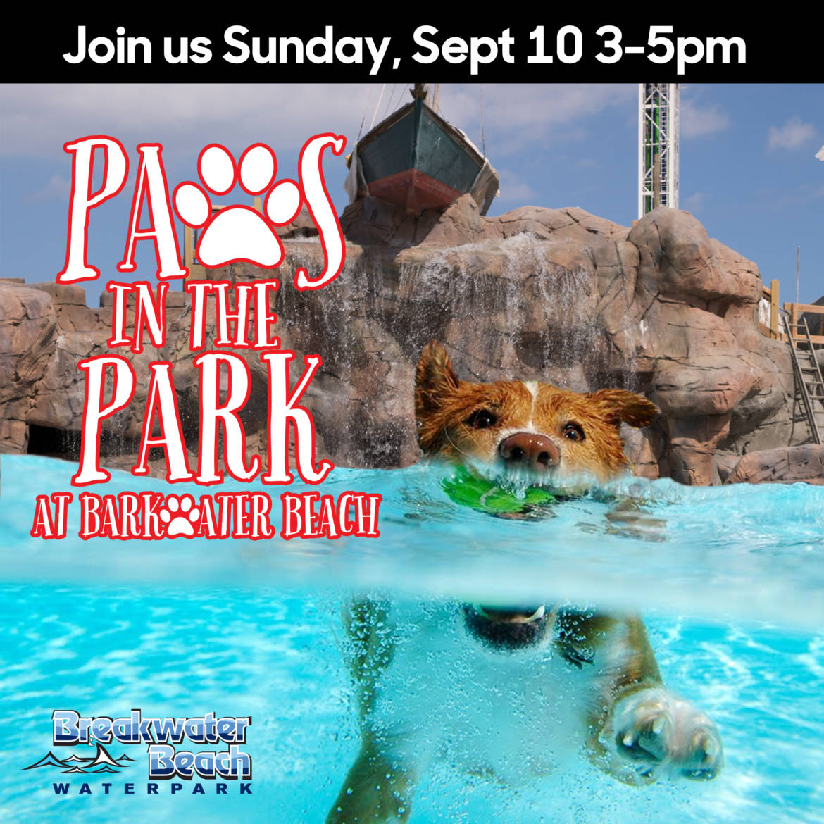 paws-in-the-park-fb-1.jpg