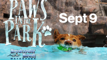 Paws in the Park at Barkwater Beach